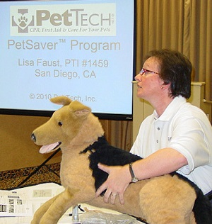 Would you know what to do when your pet needs you most?