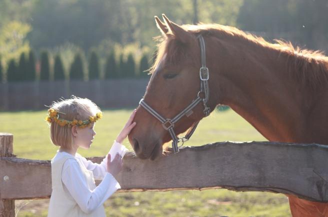 little_girl_horse_riding_school