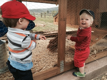 Tag (left) and Tris, [Lisa Speaker's sweet twins] hanging out with the chickens... soon, they'll be collecting and bringing in the eggs!
